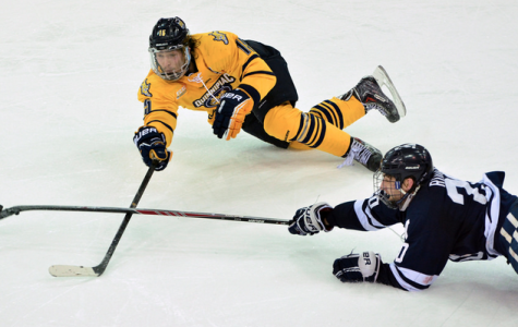 Men's hockey sweeps Yale, heads to conference championship