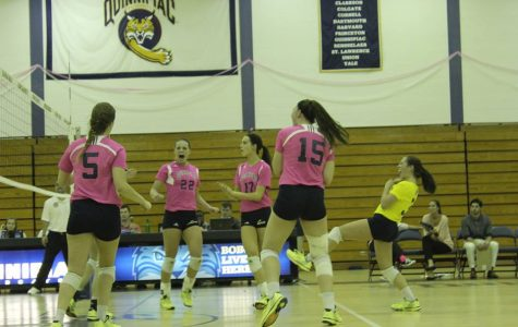 "Despite loss, women's volleyball ""Dig Pink"" night a success"