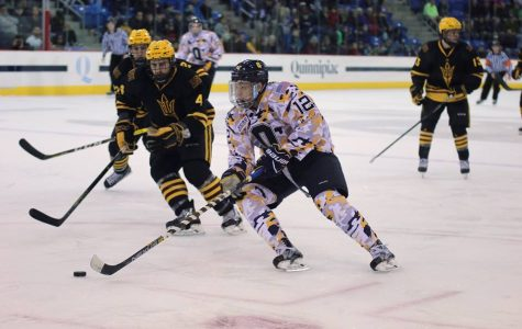 Preview: Men's Ice Hockey Hosts Clarkson For Single Game Weekend