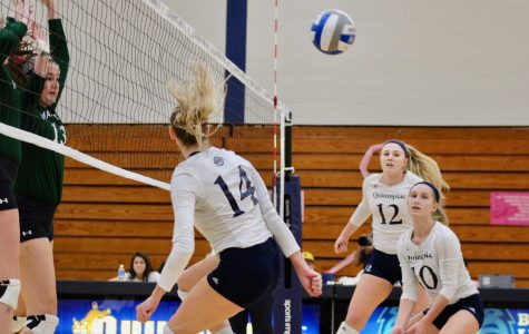 Volleyball Welcomes Saint Peter's on Saturday