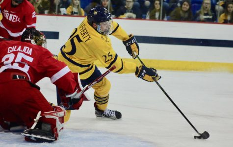 Men's hockey falls in first ECAC game to Cornell, 2-1