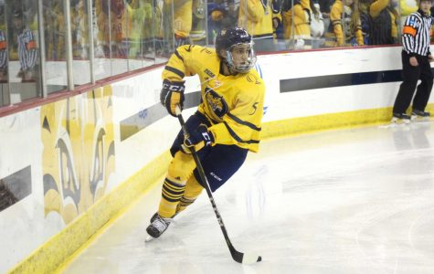 Men's hockey to take on Harvard Friday