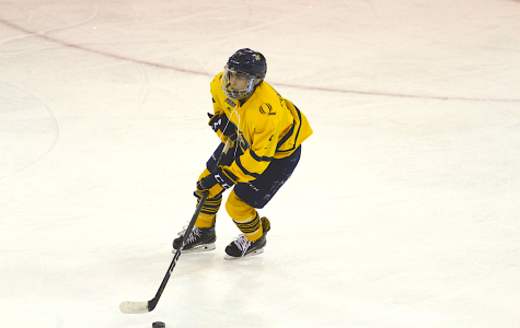 Men's hockey to take on Cornell in ECAC Hockey Quarterfinals