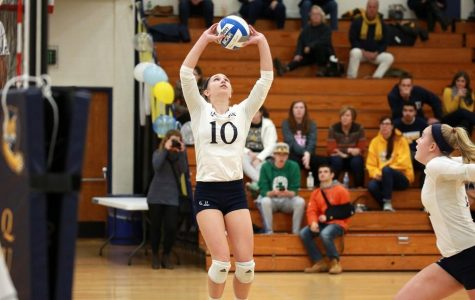 Volleyball Finds Their Stride, Sweeps Saint Peter's