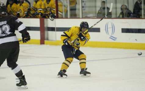 Women's Ice Hockey Looks to Continue Hot Streak Against Harvard
