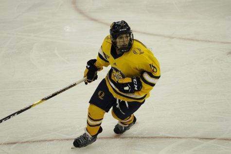 Women's Hockey Faces Tall Task in No. 5 Clarkson
