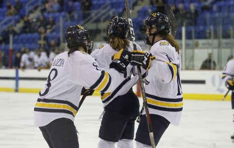 Women's Ice Hockey Looks to Inch Closer to Playoff Spot Against RPI