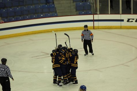 Women's hockey to take on Union Friday