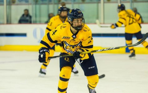 Women's Ice Hockey Heads Into Break With 4-1 Loss to Cornell