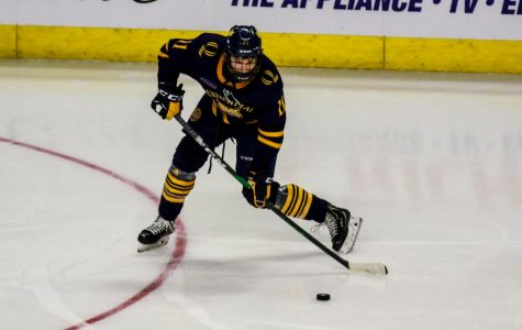 No. 5 Men's Ice Hockey Looks to Clinch First Round Bye on Senior Night Against Clarkson